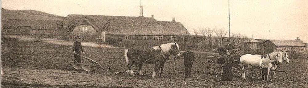 Vile Strandgaard